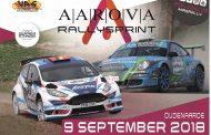 Hetzelfde succesrecept voor de 4de Aarova Rallysprint